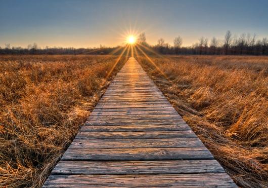 bigstock-Prairie-Boardwalk-Sunset-88880009.jpg