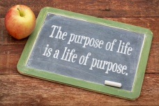 the purpose of life concept